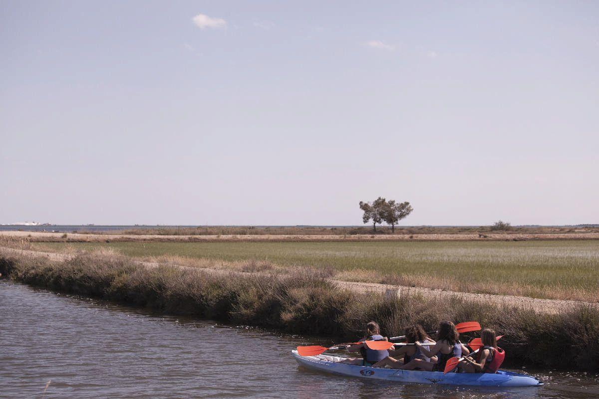 Serveis i activitats - Activitats al Poblenou, Excursions i activitats del delta de l'Ebre - 4