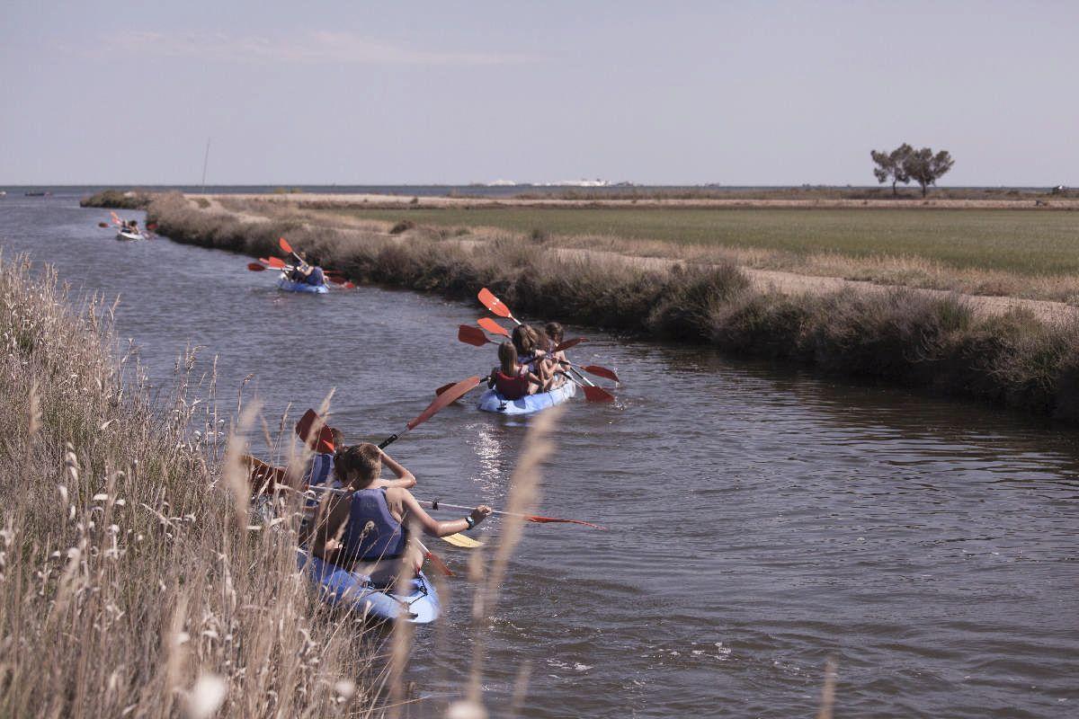 Serveis i activitats - Activitats al Poblenou, Excursions i activitats del delta de l'Ebre - 3