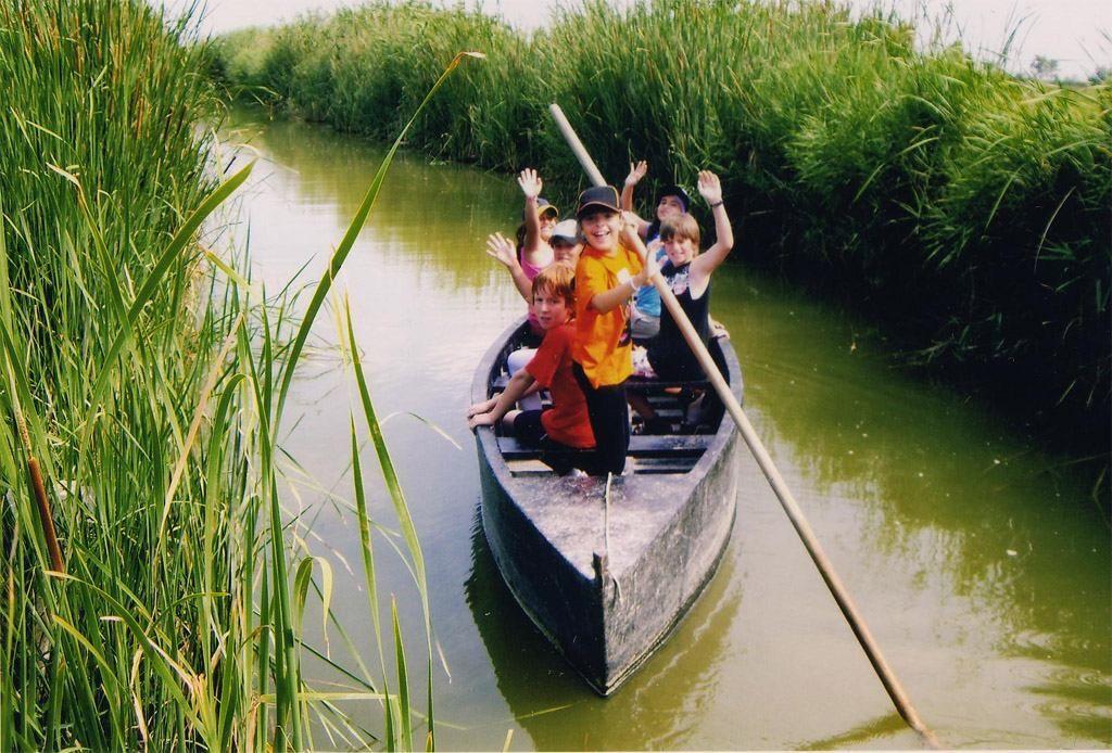 Serveis i activitats - Activitats al Poblenou, Excursions i activitats del delta de l'Ebre - 8