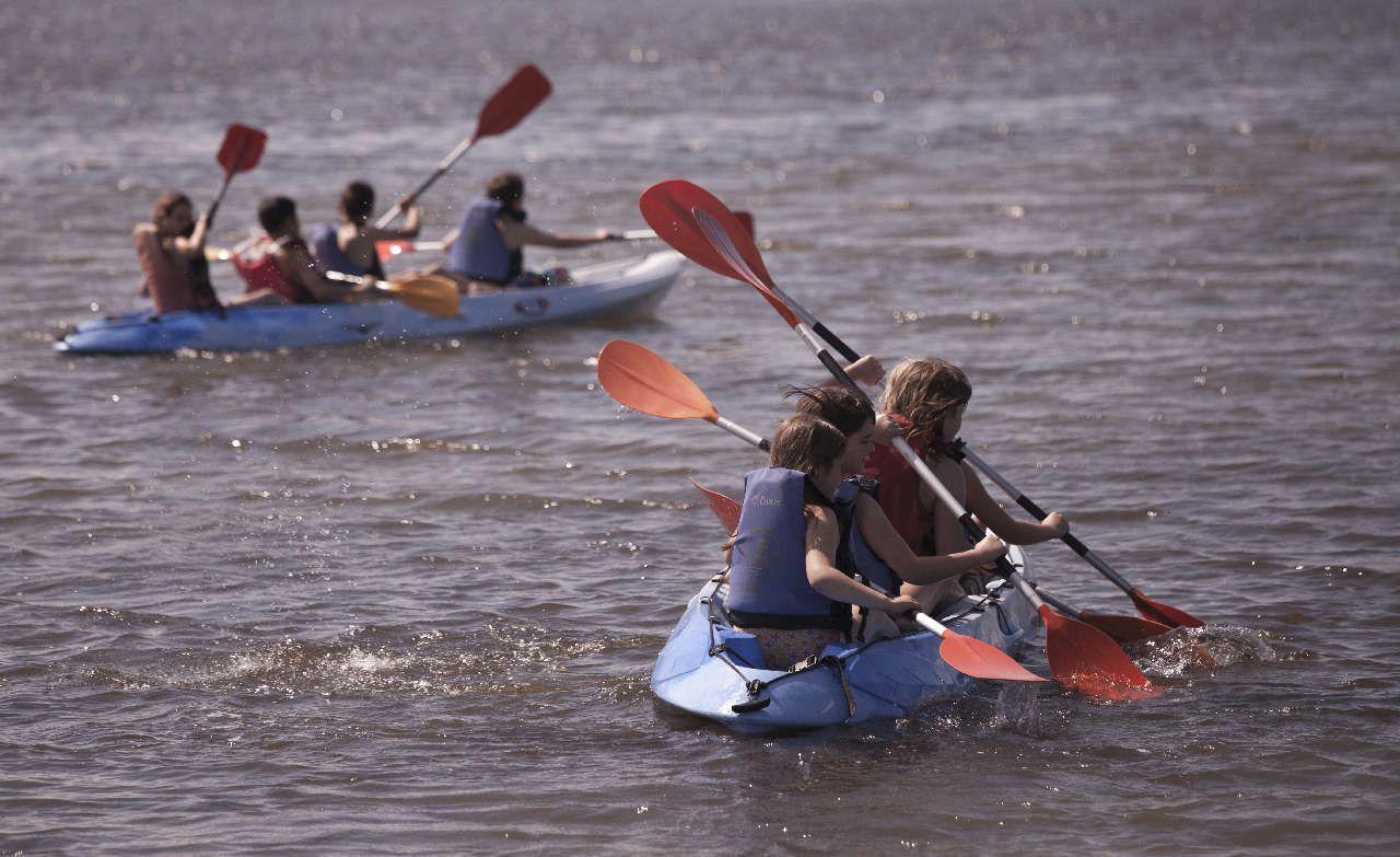 Serveis i activitats - Activitats al Poblenou, Excursions i activitats del delta de l'Ebre - 5