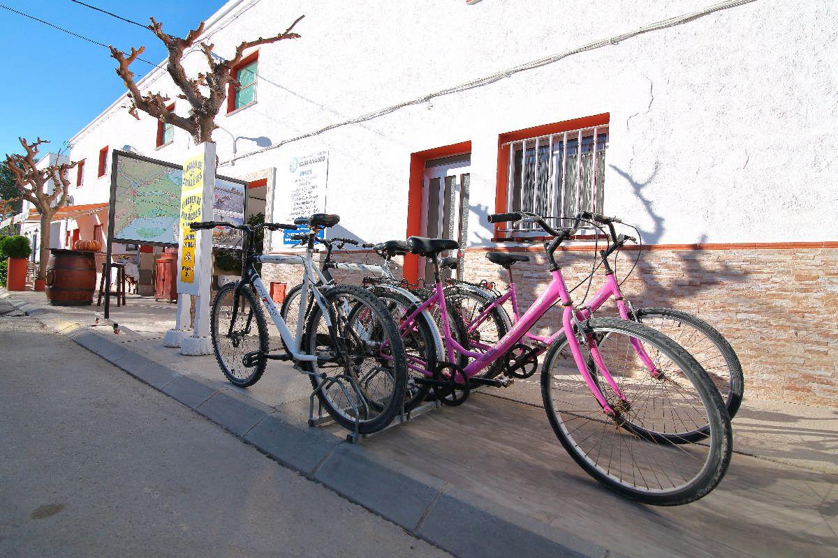 Allotjament turístic Casa Amadeo - Allotjament turístic, Turisme familiar i grups al Poblenou - 3
