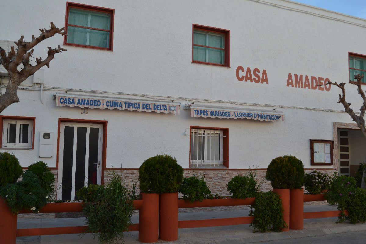 Casa de colònies Amadeo - Casa de colònies, Casa Amadeo al delta de l'Ebre - 2